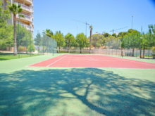 PINARdeCAMPOAMOR2D,T4